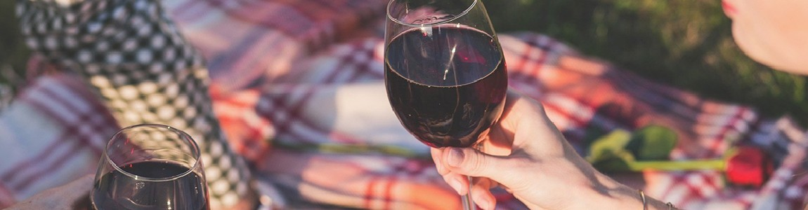 Acheter des vins français à Prague. Région Sud Ouest AOC. Vignoble familial.